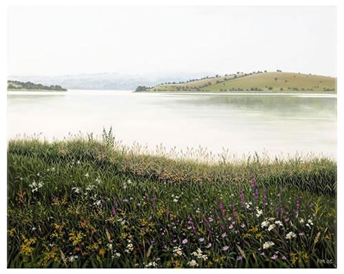 Lough Erne, Wild Grasses